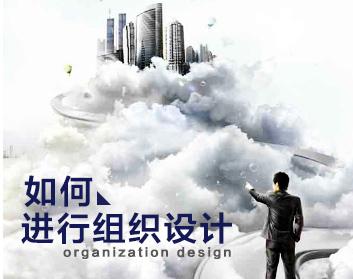 如何进行组织设计