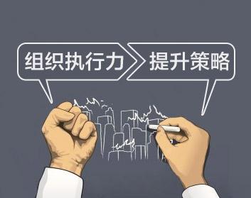 組織執行力提升策略