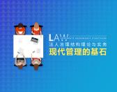 法人治理结构理论与实务-现代企业的基石(8集)