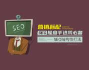 营销标配:SEO操盘手进阶必备-SEO结构性打法(11集)