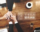 如何打造專業化的銷售團隊(2集)