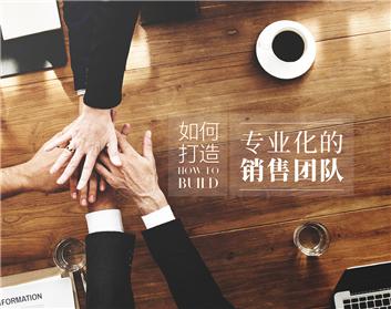 如何打造专业化的销售团队(2集)