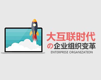 大互联时代的企业组织变革(11集)