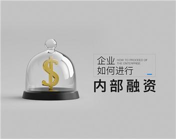 企业如何进行内部融资(2集)