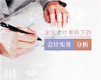 企业会计准则下的会计实务(4集)
