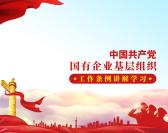 中国共产党国有企业基层组织工作条例讲解学习(3集)