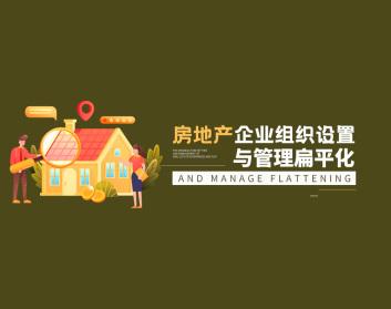 房地产企业组织设置与管理扁平化(3集)