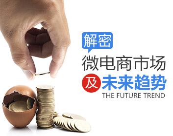 解密微电商市场及未来趋势(2集)