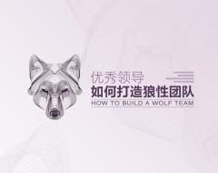 優秀領導如何打造狼性團隊(3集)
