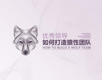 优秀领导如何打造狼性团队(3集)
