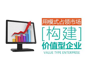 用模式占领市场,构建价值型企业(4集)