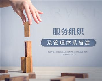 服务组织及管理体系搭建(3集)