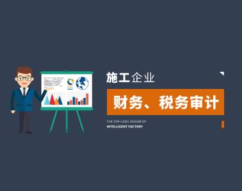 施工企业财务、税务审计(2集)