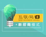 互聯網+新招商模式(4集)