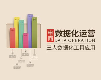 电商数据化运营——三大数据化工具应用(20集)