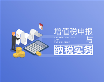 增值税申报与纳税实务(25集)