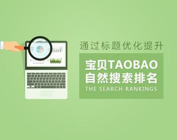 通过标题优化提升宝贝自然搜索排名(3集)