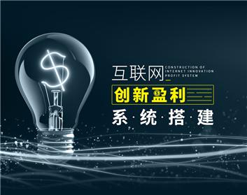 互联网创新盈利系统搭建(2集)