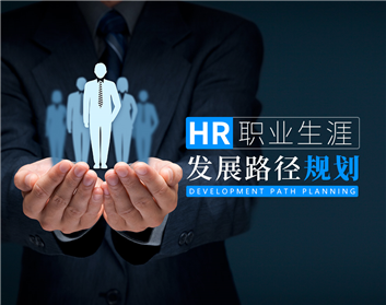 HR职业生涯发展路径规划(20集)