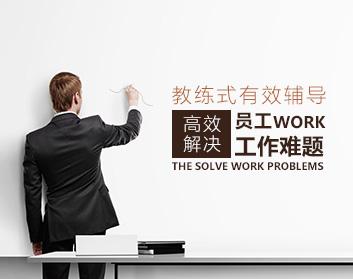 教练式有效辅导——高效解决员工工作难题(2集)