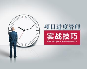 项目进度管理工具与实战技巧(6集)
