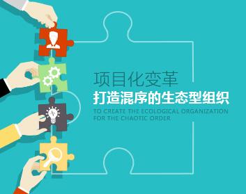 项目化变革——打造混序的生态型组织(8集)