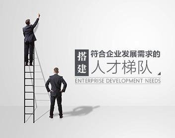 搭建符合企业发展需求的人才梯队(6集)