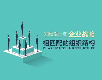 如何设计与企业战略相匹配的组织结构(5集)