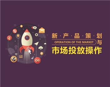 新产品策划与市场投放操作(3集)