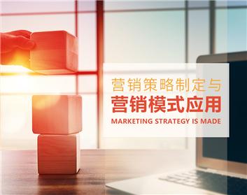 营销策略制定与营销模式应用(3集)