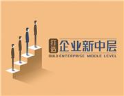 打造企业新中层(4集)