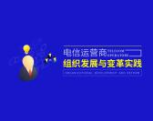 电信运营商组织发展与变革实践(2集)