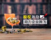 股權激勵助力企業騰飛(3集)