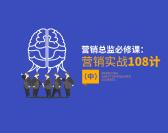 營銷總監必修課:營銷實戰108計-中(12集)