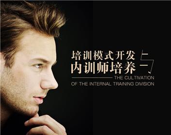 培训模式开发与内训师培养(3集)