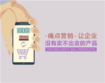 痛点营销-让企业没有卖不出去的产品(5集)