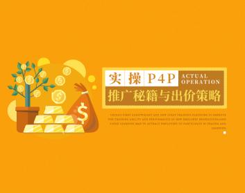 实操P4P推广秘籍与出价策略(3集)
