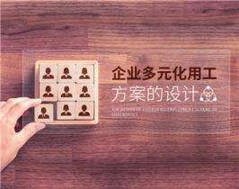 企业多元化用工方案的设计(2集)